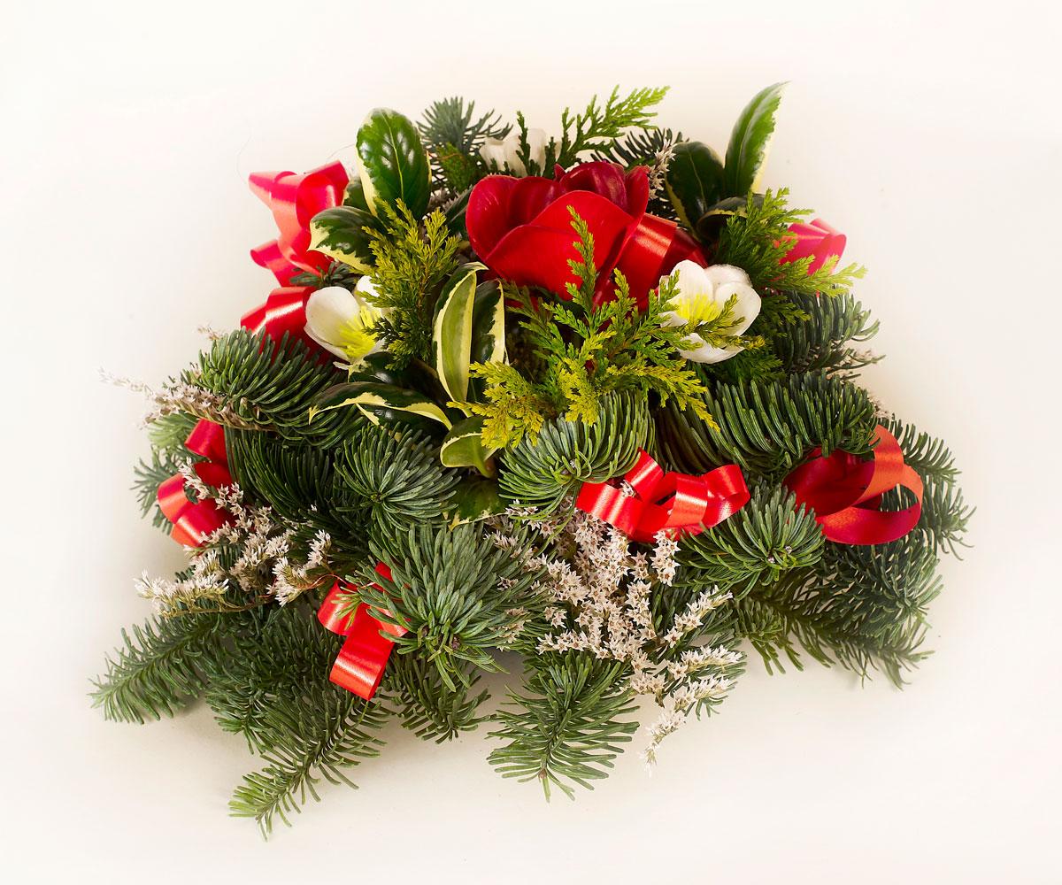Red Christmas Posie Lyonshall Nry