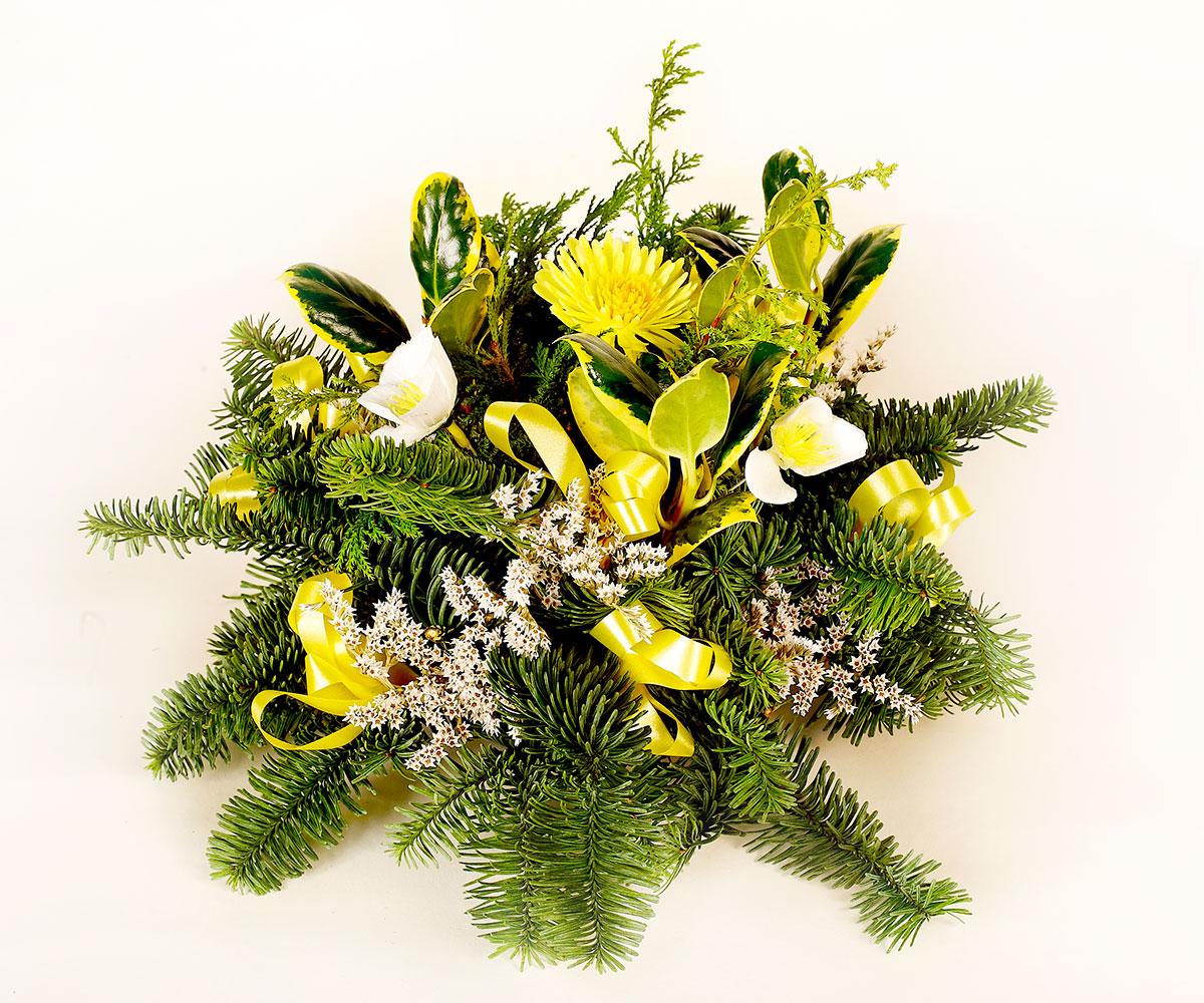 Christmas Posie yellow Lyonshall Nry